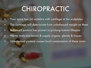 Chiropractic Myths & Facts