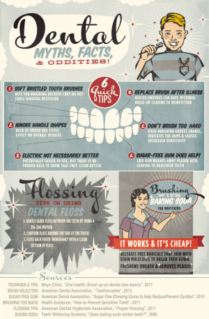infographic explains common dental myths and facts about your dental ...