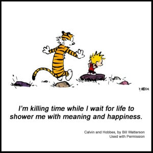 Calvin And Hobbes Quotes On Happiness 17046 just feel free and have ...