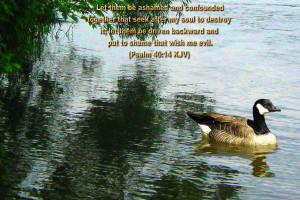 Inspirational Wallpapers Bible Verses Photo 34 of 53