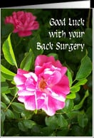 Back Surgery Good Luck Card - Pink Roses card - Product #823176