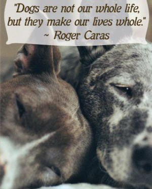 Animal banner quotes