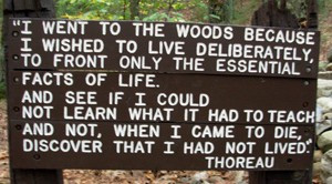 an analysis of the topic of henry david thoreau born in concord He was born david henry thoreau in concord, massachusetts, into the modest new england family of john thoreau (a pencil maker) and cynthia dunbar his paternal grandfather was of french origin and was born in jerseyhis maternal grandfather, asa dunbar, led harvard's 1766 student butter rebellion, the first recorded student protest in the .