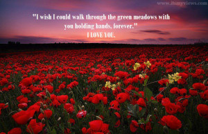 Name : beautiful-rose-flower-widescreen-wallpaper-with-romantic-quote ...