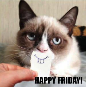 Grumpy Cat Is Finally Happy Friday