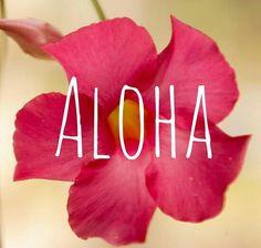 hawaii more hawaii surfing aloha hawaii lakes tahoe aloha friday ...