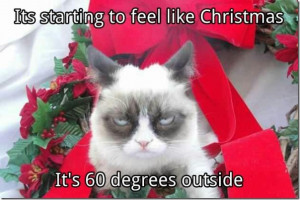 Grumpy Cat Quotes Christmas