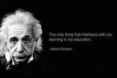 Albert Einstein Education Quotes