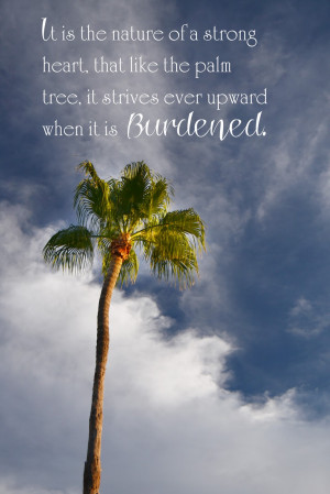 Tree Quotes Quipped quotes and free fonts