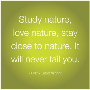 study nature love nature stay close to nature it will never fail you