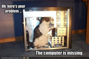 ... -your-computer is tagged from: funny-pictures-cat-fixes-your-computer