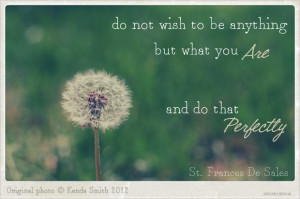 Inspirational Quotes About Wishes and Wishing