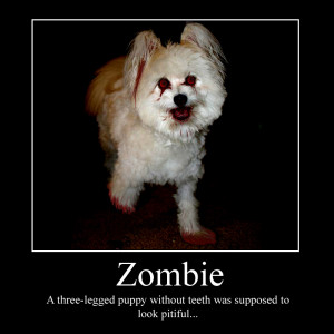 BLOG - Funny Inspirational Posters Zombies