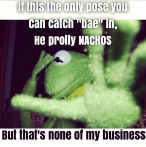 Photos Kermit the Frog inspires funny Instagram memes