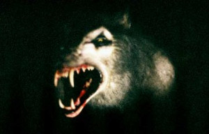 ... snaps unleashed werewolf is like the bad moon werewolf on four legs