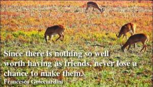 ... never lose a chance to make them francesco guicciardini # quotes
