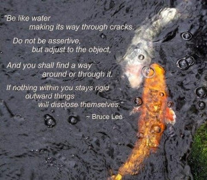Quotes and bruce lee sayings about llife water fish