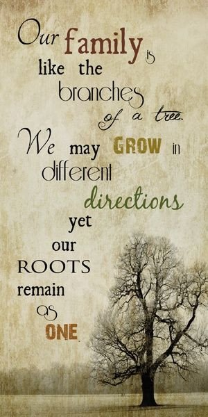 inspirational quotes about family trees