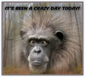It's been a crazy day today!