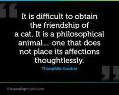 Cat Quotes at The Great Cat www.thegreatcat.org on Pinterest   269 Pi ...