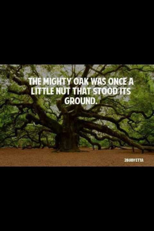 Mighty Oak - looked this up after seeing it quoted on Ashleys facebook ...
