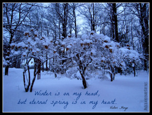 Beauty for your day...Winter Scene - Victor Hugo Quote ...
