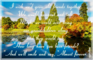 Wish We'd Grow Old Friends Together