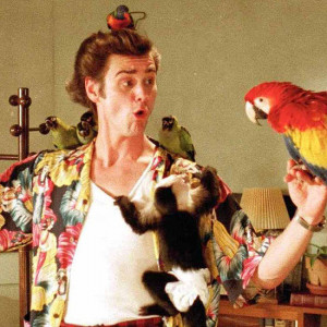 Best-Quotes-From-Ace-Ventura-Pet-Detective.jpg