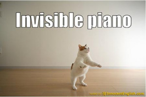 Page topic: Collection of really funny invisible lolcats   funny ...