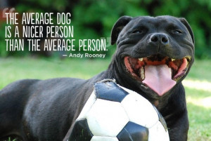 People love their four-legged pets. This is pet quotes collection by ...