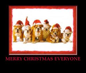 Christmas dogs-merry-christmas-everyone-cute-dogs-santa-hats