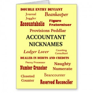 For Accountants Auditors CPAs Accounting Finance and Tax Professionals