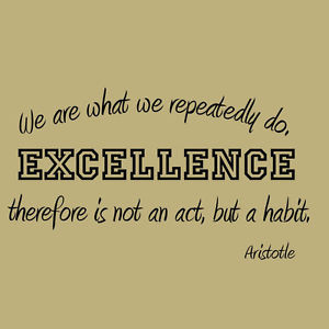 ... -We-Repeatedly-Do-Inspirational-Wall-Decal-Motivational-Quote-Sports