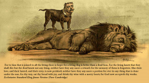 ... -for-a-living-dog-is-better-than-dead-lion-quotes-468984.jpg