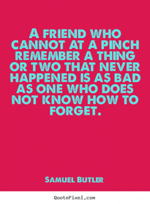 Samuel Butler Quotes - A friend who cannot at a pinch remember a thing ...