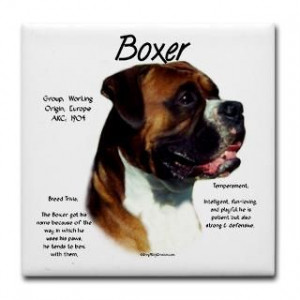 Boxer Dog Quotes and Poems