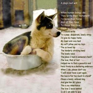 dog dog quote dog quotes