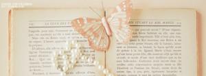 Vintage Butterfly 300x250 Cute Vintage Facebook Timeline Cover
