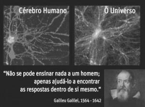 Cérebro Humano e o Universo