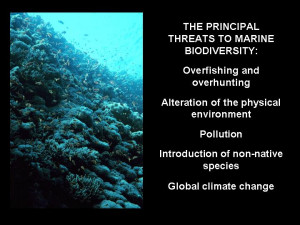 The threats facing coral reefs are broadly similar to the types of ...