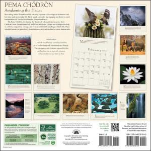 ... | Inspirational > Inspirational Quotes >Pema Chodron Wall Calendar