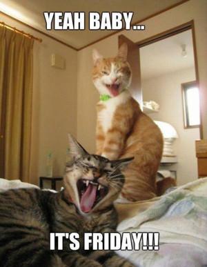 Yeah, baby! It's Friday!!!