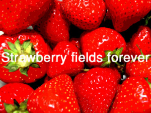 ... forever, lyrics, music, quote, strawberry, strawberry fields forever