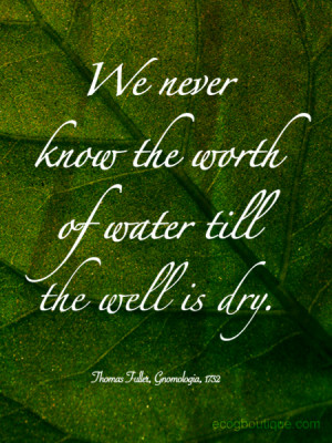 ... Never Know The Worth Of Water Till The Well Is Dry - Environment Quote