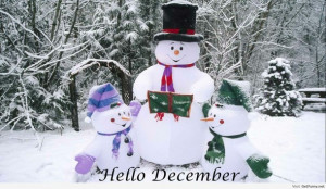 ... hello december, humor, quotes and sayings, funny winter, winter 2013