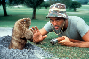 BILL-MURRAY-QUOTES-GOPHER-CADDYSHACK-facebook.jpg