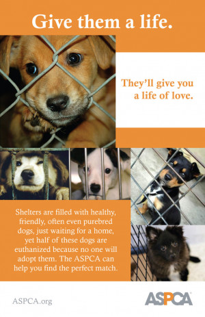 Adopt a Shelter Dog Poster by Strange-1