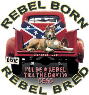 Rebel Flags With Sayings Redneck Rebel Flag With Saying