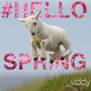 Hello Viddy Fam,Yesterday was the first day of Spring. Here in the ...