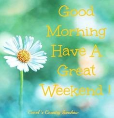Good morning, have a great weekend! via Carol's Country Sunshine on ...